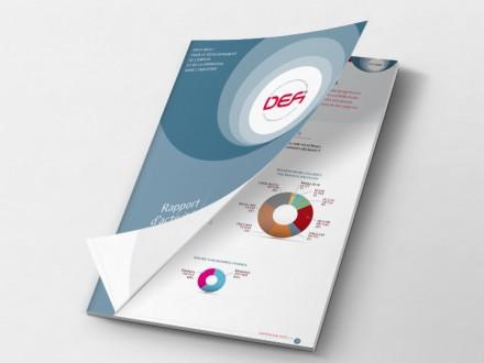 OpcaDefi - Rapport d'activités 2013